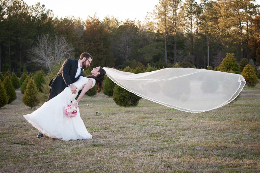 Veil in the wind pinterest inspiration