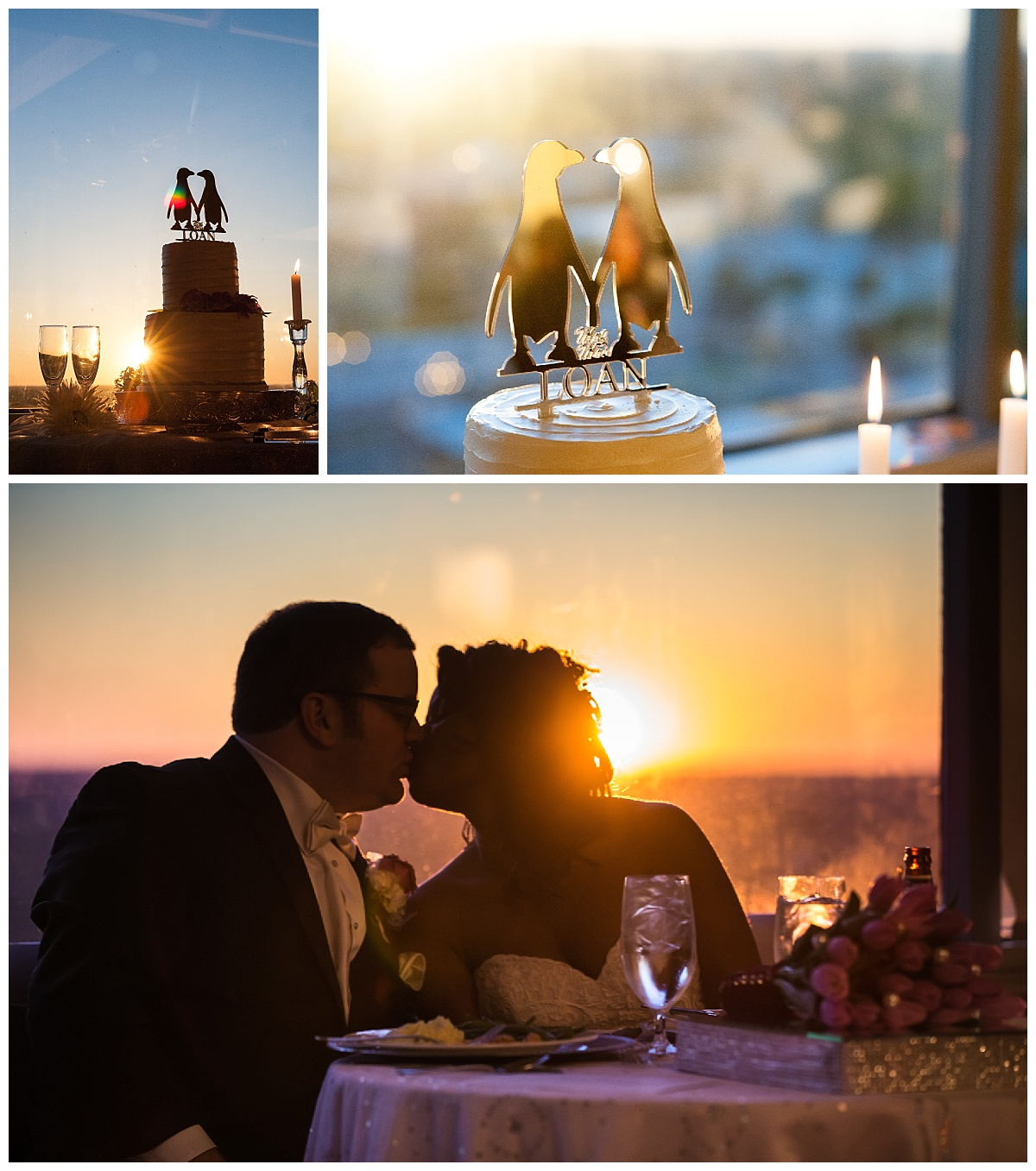 sunset and penguin cake topper