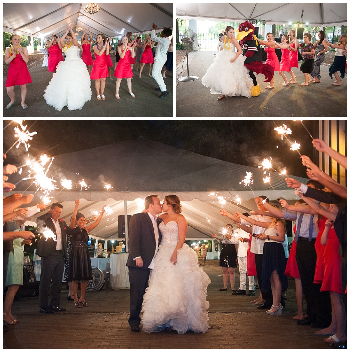 Cocky at wedding reception and a sparkler exit at the Lace House