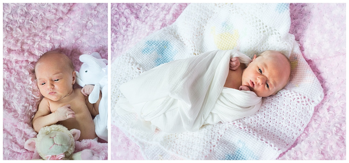 Columbia lifestyle newborn session