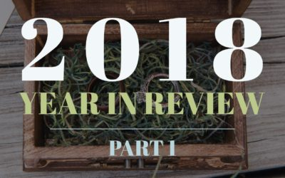 2017 Year End Review- Part 1