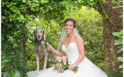 Bailey's Lace House Bridal Portrait with Dog